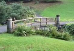 Foto von einer Brücke im Park