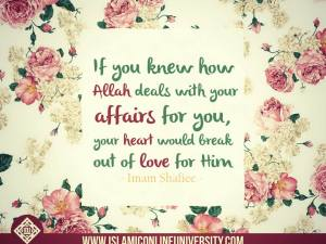 Picture: If You Knew Allah