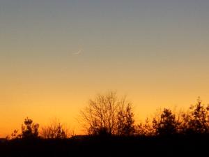 Photos of Crescent Moon of Safar 1437 AH