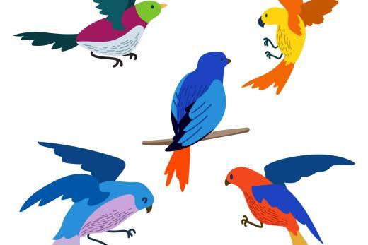 Birds in French