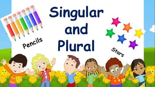 Singular plural quiz