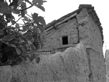 118 Mirada al Pasado Alcuetas