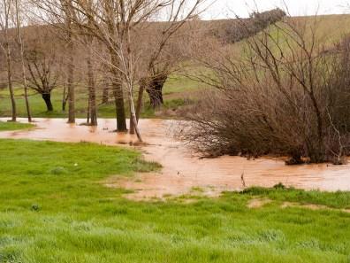 Riada en Alcuetas debido a las lluvias del mes de Abril de 2016