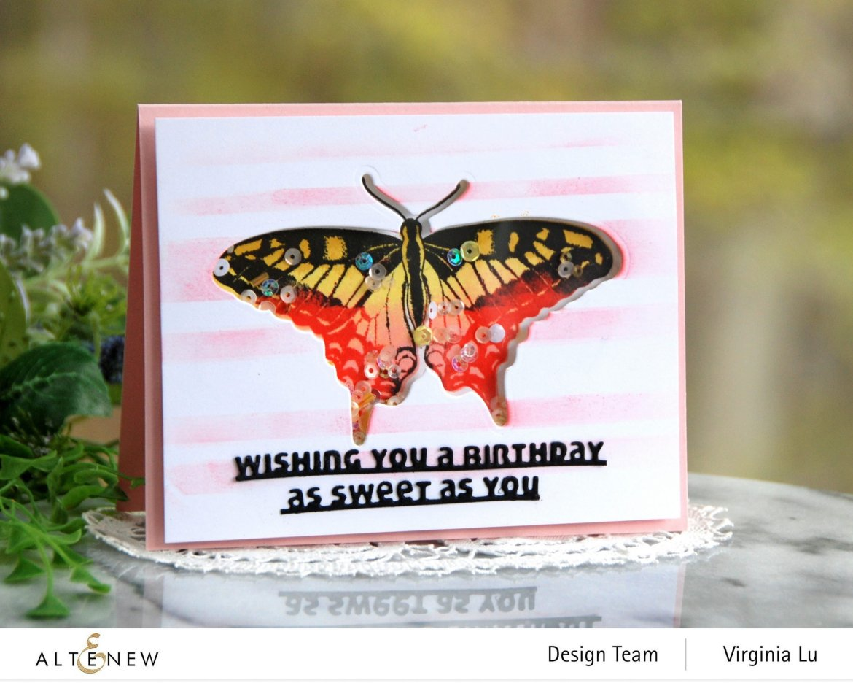 06032021-Dovetail Butterflies Stamp & Die Bundle -Slim Sentiments Die Set -Stripe Builder Stencil -001