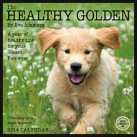 Healthy Golden