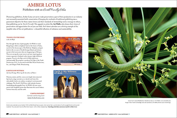 Bare Essentials Magazine article about Amber Lotus