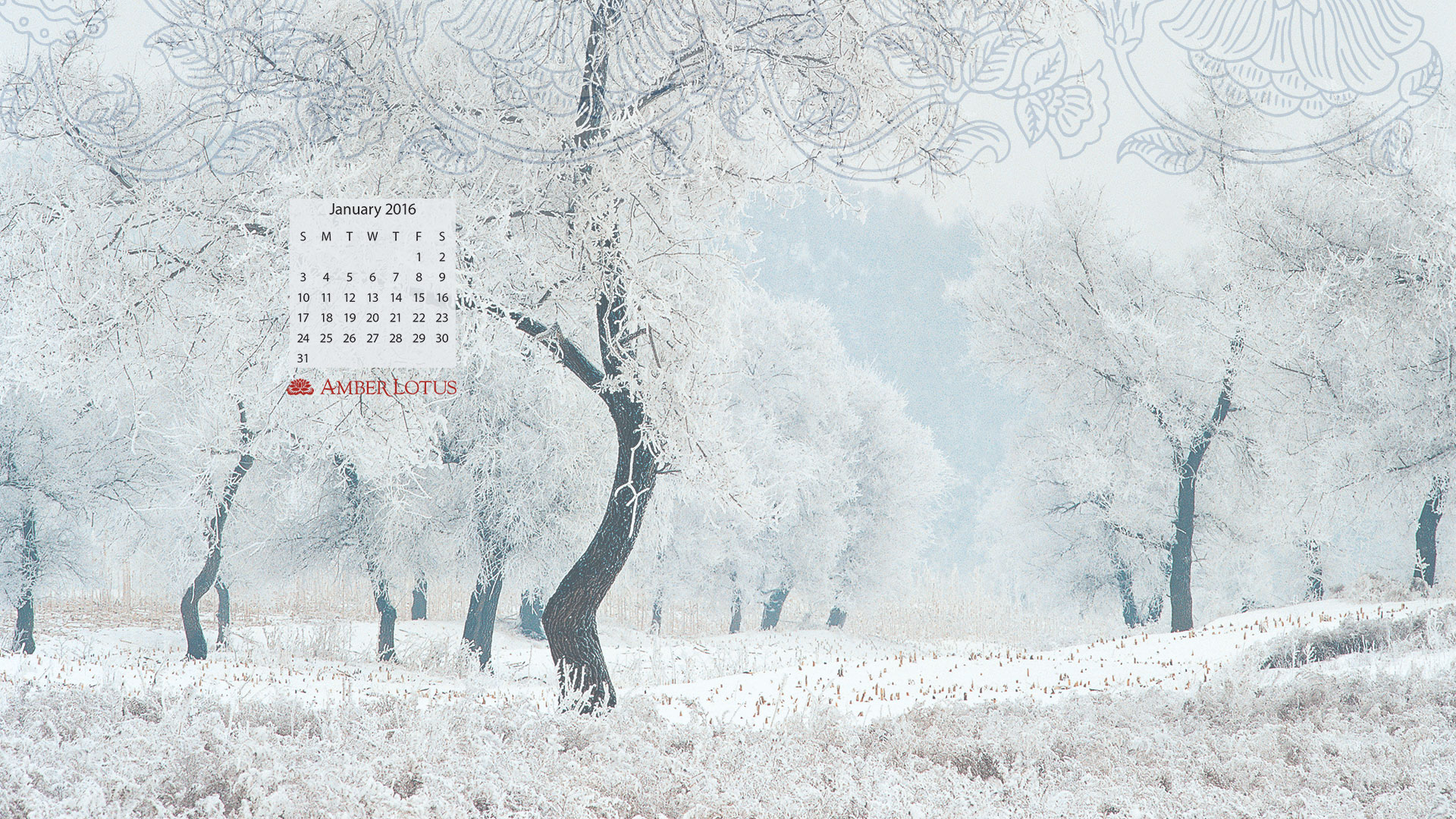 desktop wallpaper calendar — january 2016 — free to download - amber