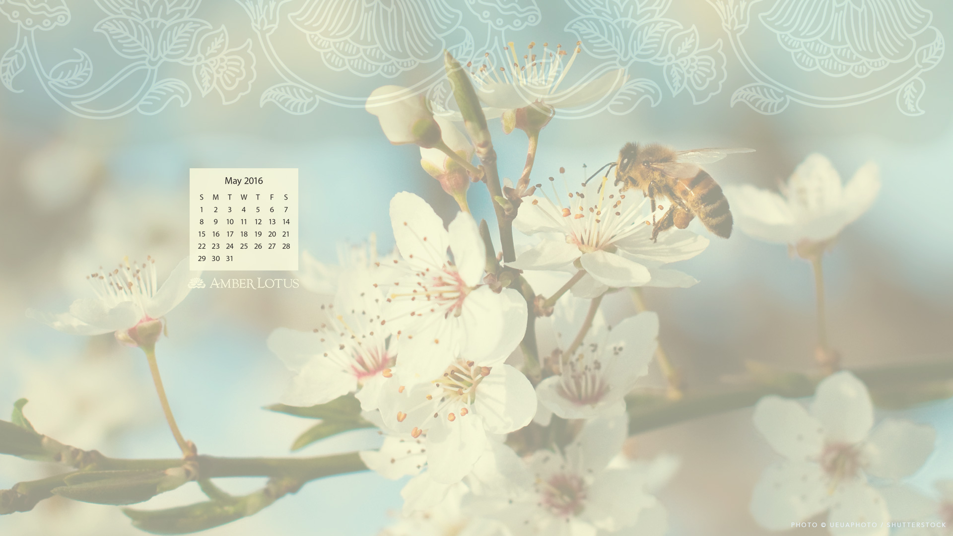 Calendar Wallpaper May : Desktop wallpaper calendar — may free to download