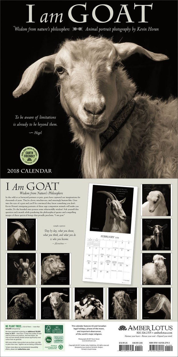 I Am Goat wall calendar