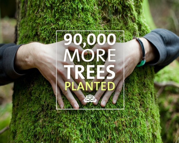 90,000 trees planted