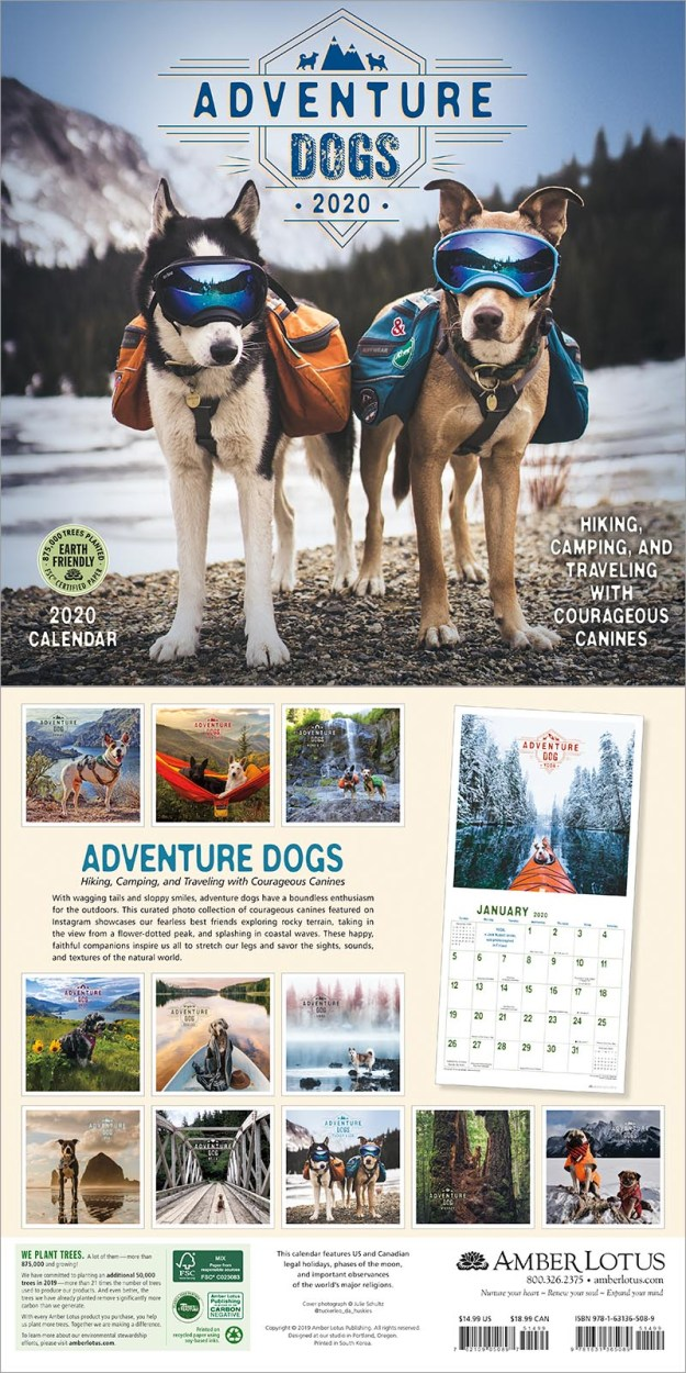 Adventure Dogs 2020 wall calendar