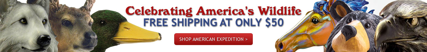 American Expedition Ad Banner