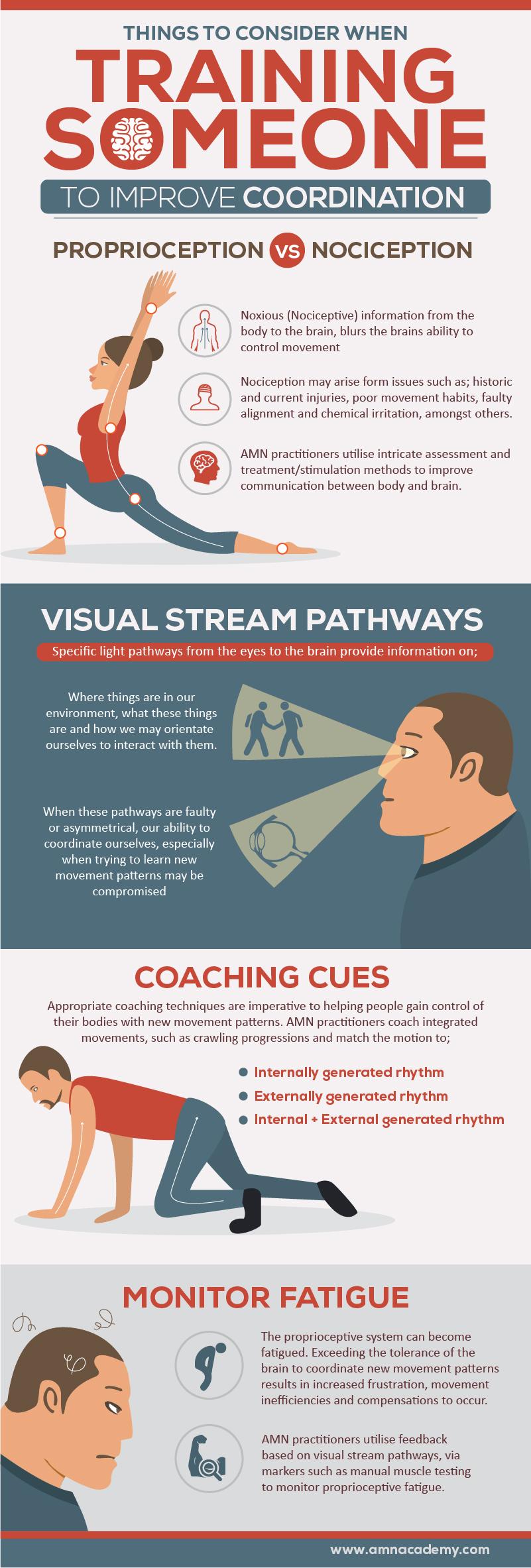 coordination infographic amn academy