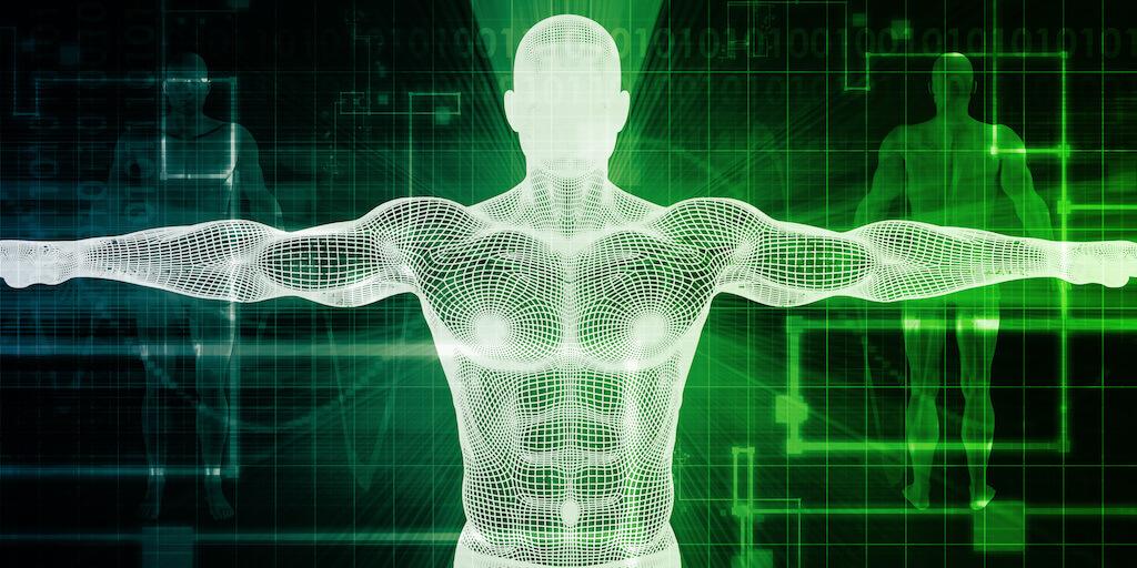 AMN academy body system