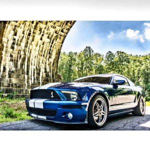 Porta Mustang Blog Pic 3