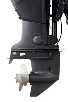 Change lower unit gear lube every fall.