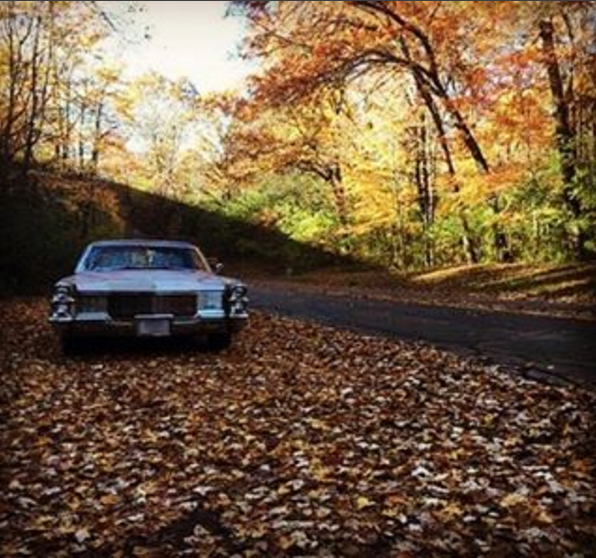 Car in Fall
