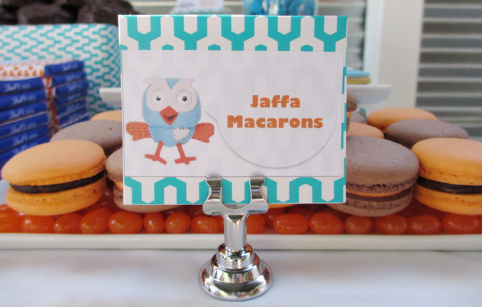 Owl Party Dessert Table Macarons