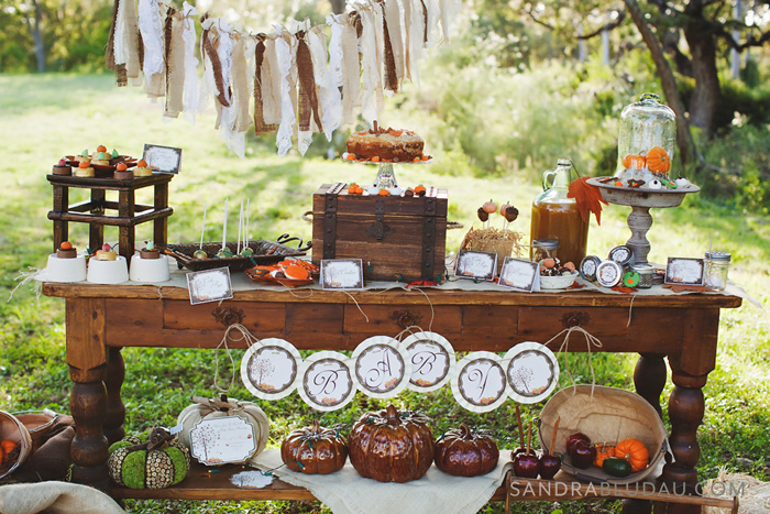 Rustic Fall Baby Shower Dessert Table