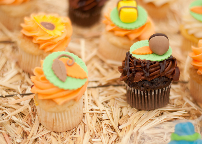 Pumpkin Party | Fall Inspired Cupcakes