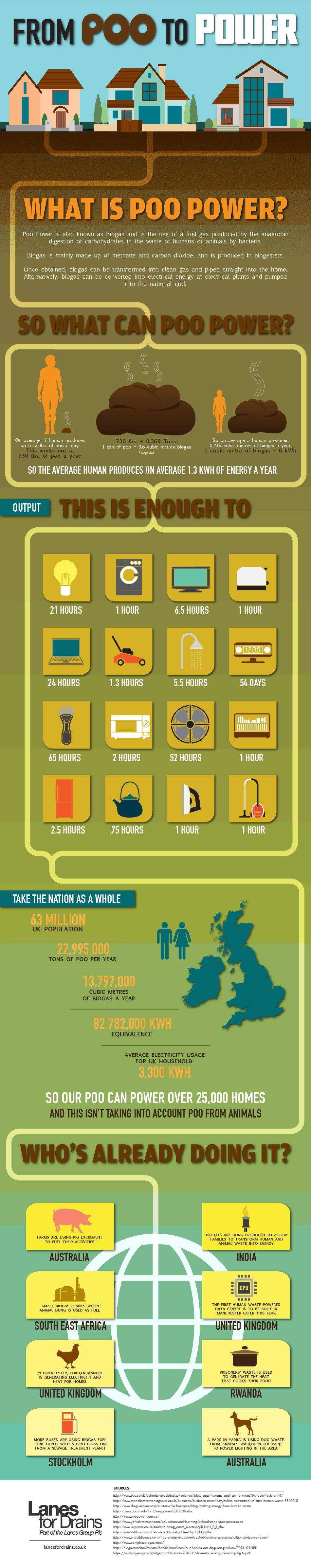 Infographic that demonstrates poo power. Electric power generated from poo!