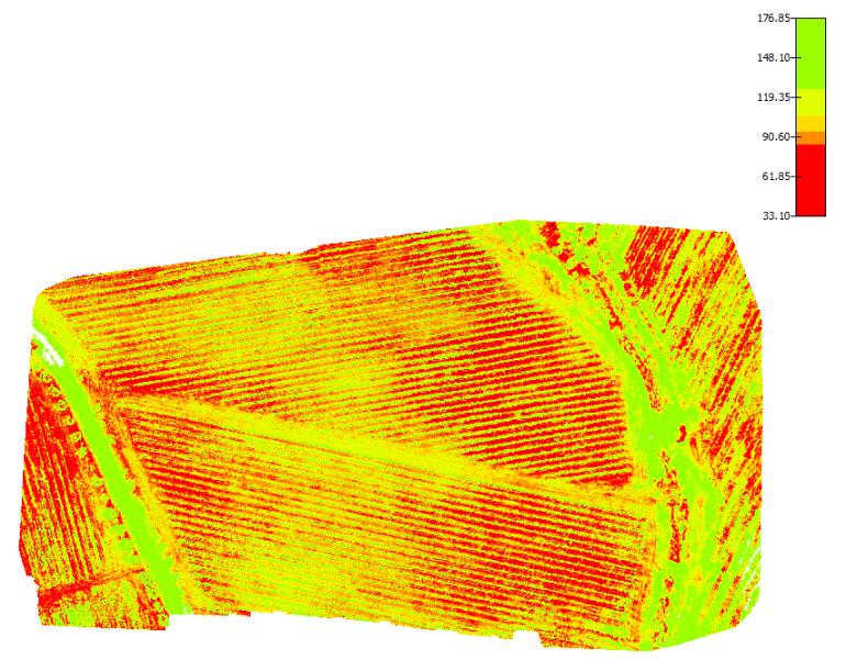 Mappa NDVI indice vigore vegetativo di un vigneto