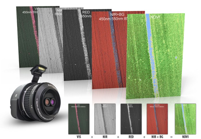 Agrowing Sample Images (the NIR+BG presents the alignment of NIR with the blue and green channels by replacing the red channel with the NIR one).