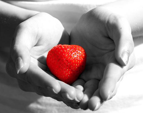 O Amor e a Doação