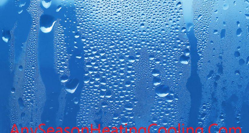 Humidity, Humidistat, Humidifier & Thermostat