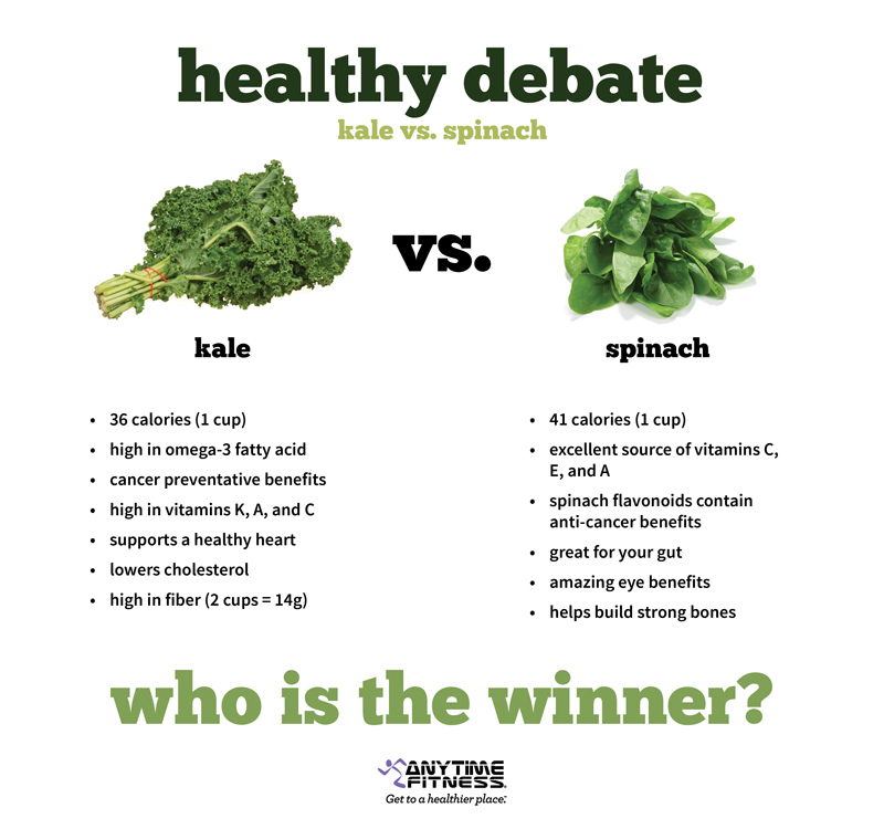 Spinach Vs Lettuce Vs Cabbage