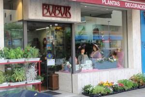 Floristería Bubur