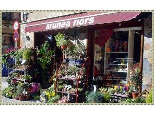 Tienda Brunea Flors en Manresa