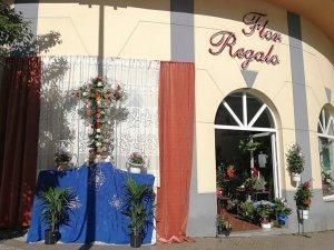 Flor Regalo
