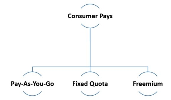 Consumer Pays scenario API monetization: Pay-As-You-Go, Fixed Quota, and Freemium