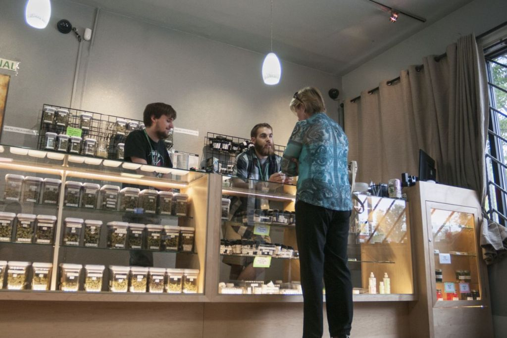 5 Things I Learned Starting a Business in the Cannabis Industry