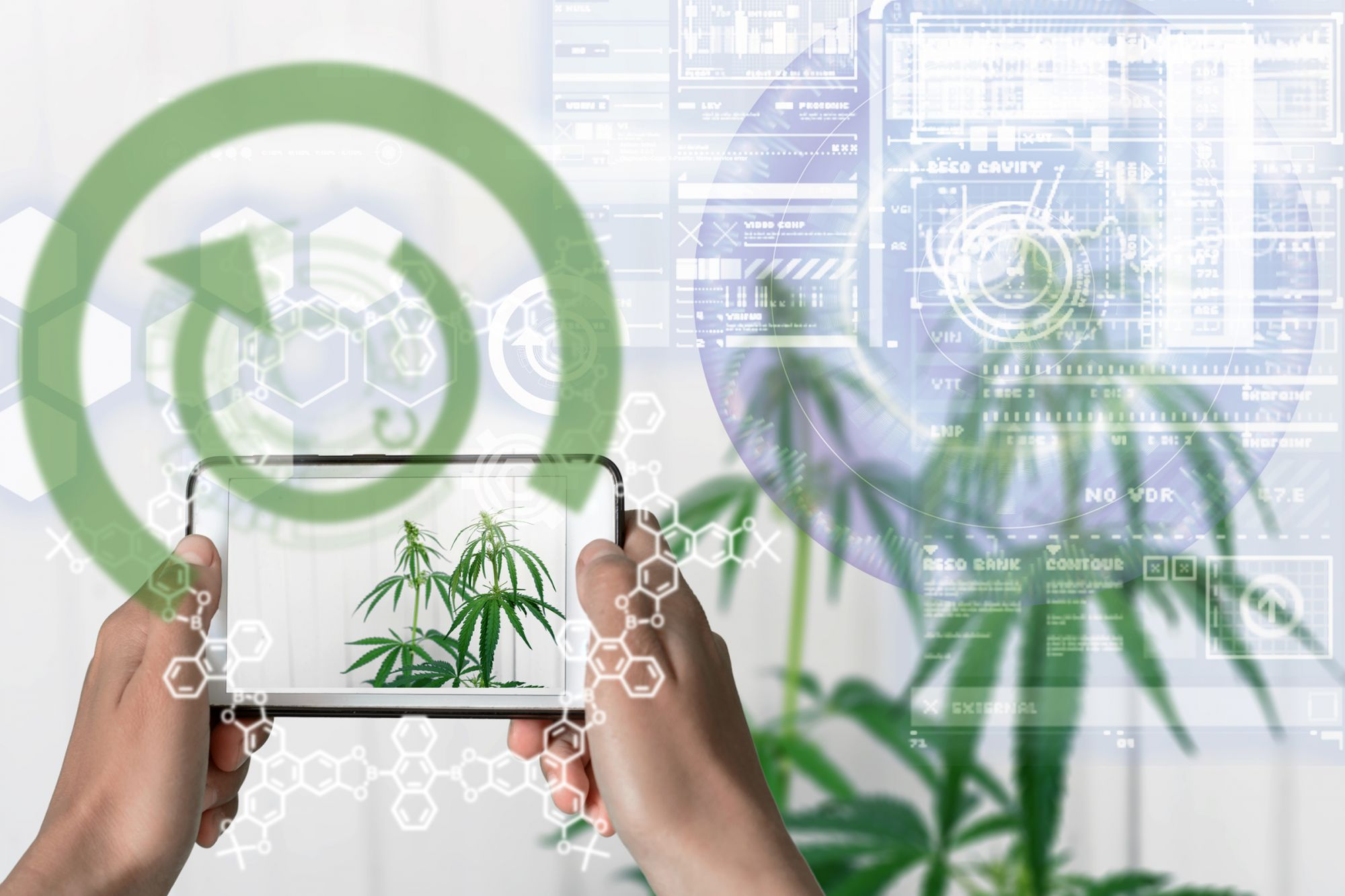 3 Tips To Futurize Your CannaBusiness With Artificial Intelligence