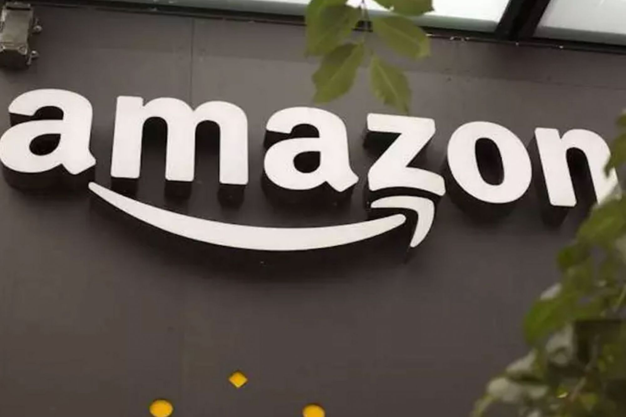 Amazon Staffers Risk Jobs to Call Out Its Climate Change Policies