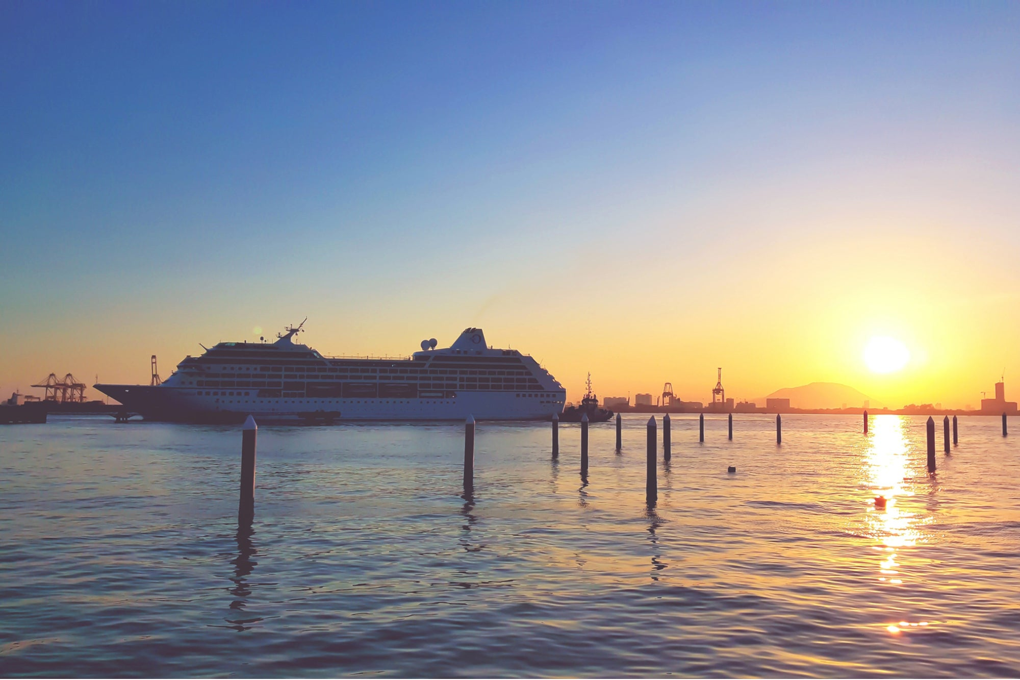 Selling Cruises During a Lockdown? Here's How One Travel Agent Does It.