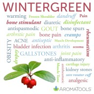Wintergreen EO Spotlight