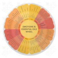 """Emotions & Essential Oils"" Wheel"