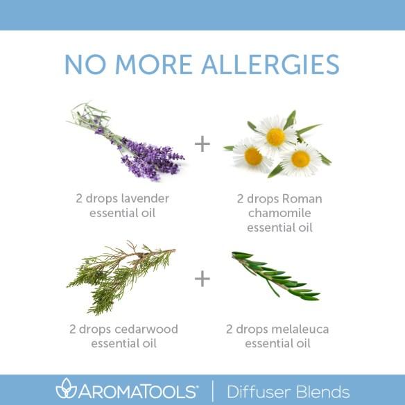 No More Allergies Diffuser Blend