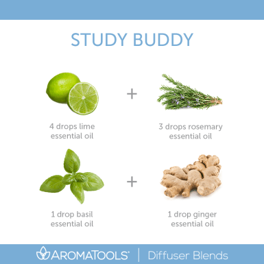 StudyBuddy_Blend_Revised