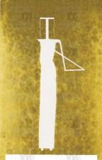 ginodedemidicis
