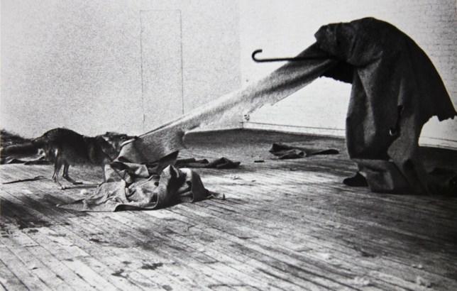 Joseph Beuys, i like America and America likes me