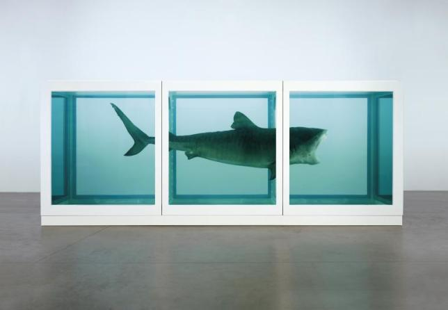 Damien Hirst, The Physical Impossibility of Death in the Mind of Someone Living, Tiger shark, glass and steel case, 5% formaldehyde