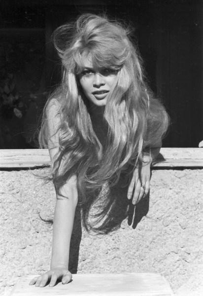 Brigitte Bardot par Jack Garofalo