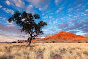 Namib Desert, Namibia - Twelve Breathtaking Places to Spend Your Birthday