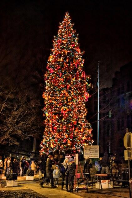 Christmas Tree, Geneva Switzerland - Christmas Vacation in Europe