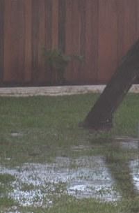 Water pools in backyard.jpg