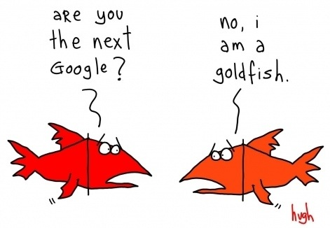 google-goldfish